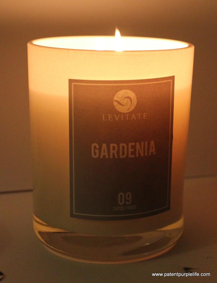 Levitate Gardenia