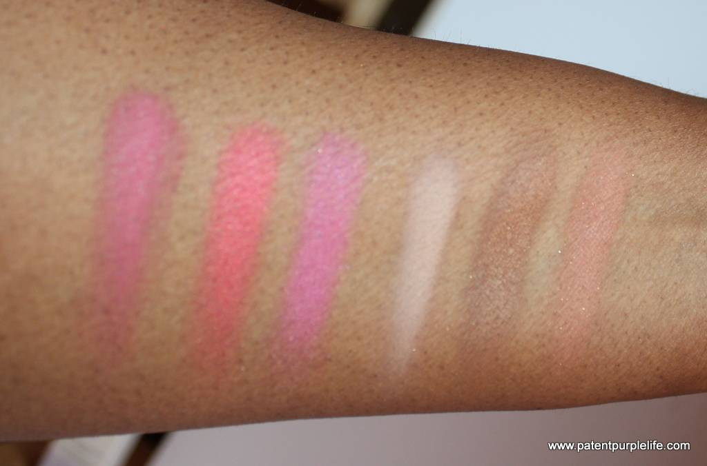 By Terry Sun Designer Palette Swatch WoC